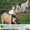 grassland fencing