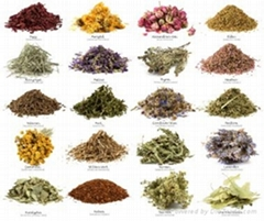 All Kind Of Herbal Medicine and Ayurvedic Medicine