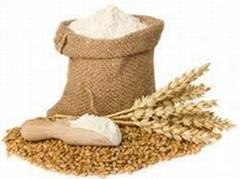 wheat bran,wheat flour