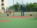埋地三节钢化透明玻璃篮球架 3