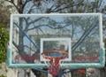 户外钢化玻璃篮球板