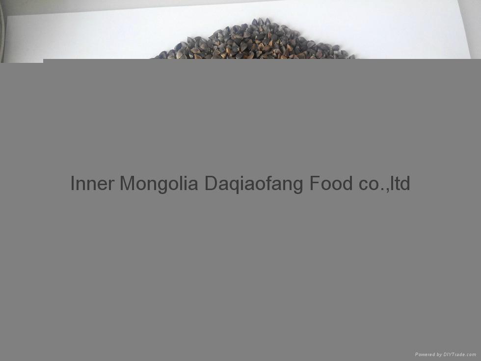 2014 new raw buckwheat from China  3