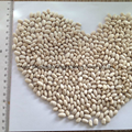 White kidney beans (Japan type) 4