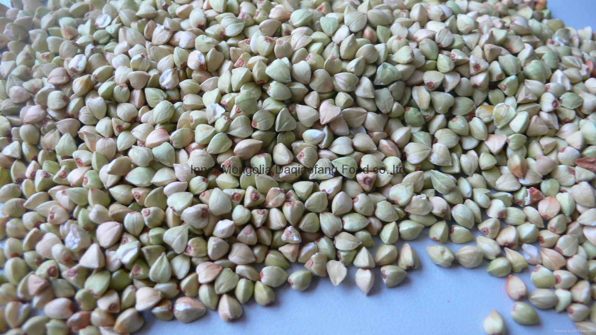 Buckwheat Kernels 4