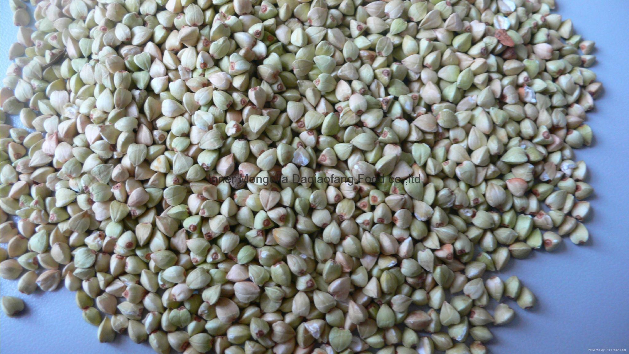 Buckwheat Kernels 5