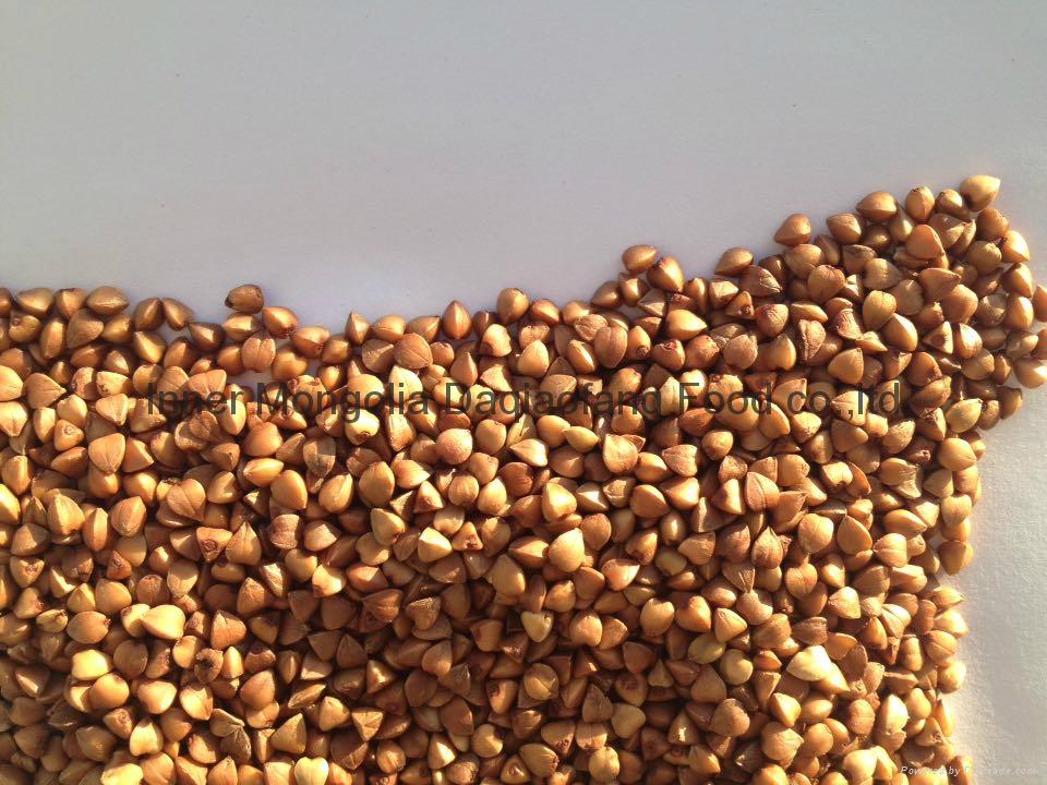 Roasted Buckwheat kernels 1