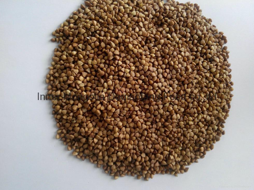 Roasted Buckwheat kernels 2