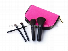 Cosmetic Brush Set 5pcs LJLMB-009