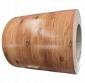 CHINA superior quality outdoor wastebin color prepainted galvanized steel coil 2