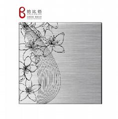 SPEEDBIRD Embossed PPGI steel sheet for Refrigerator Side Panel