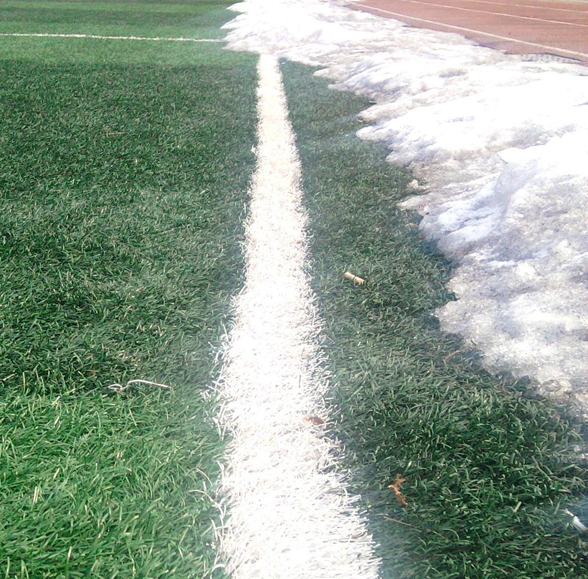 足球场人造草坪填充颗粒 3