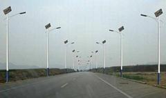 廣西新農村建設太陽能庭院燈