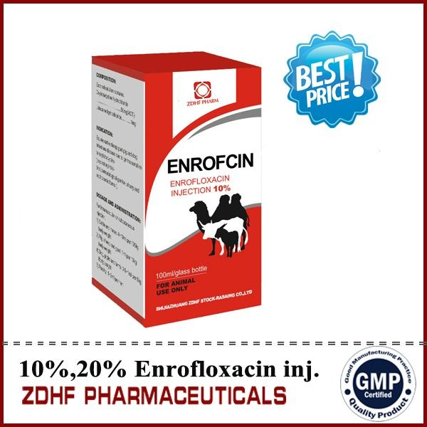 10% enrofloxacin injection 50ml oral solution  1