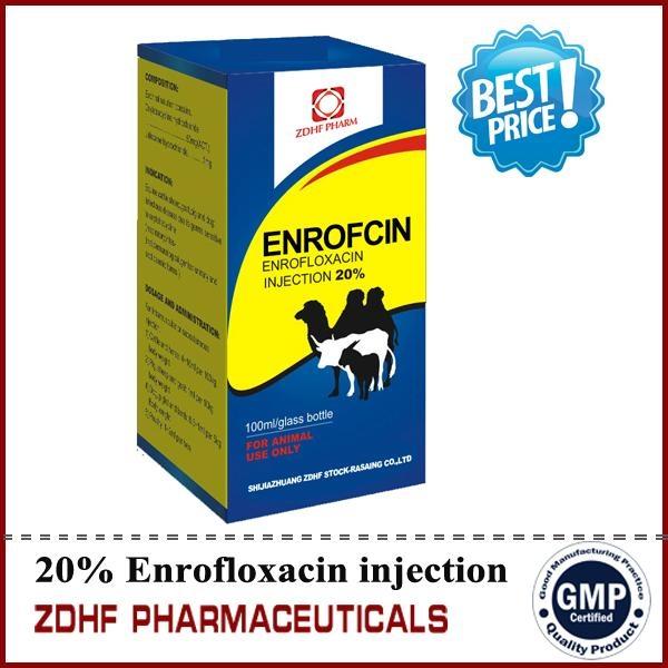 10% enrofloxacin injection 50ml oral solution  5