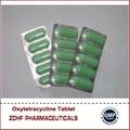 Veterinary Antibiotic agent Oxytetracycline bolus 500mg 2