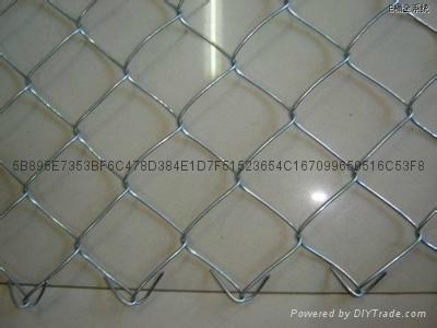菱形鐵絲網 機編鍍鋅網 4