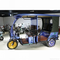 Electronic tricycle etrike borac easy