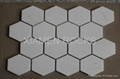 Hexagon Marble Mosaic Tile with White Statuary