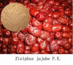 Fructus Jujubae Extract