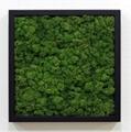 Organic Air Freshener FRAMO:[BL-54] 1