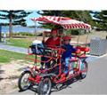 four wheel surrey bike quadricycle