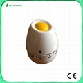 Decorative egg kitchen timer