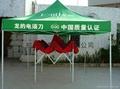 促销帐篷 1