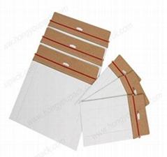 Cardboard envelope