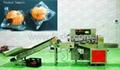 Kl-350X Down Paper Fresh Fruit Full Auto