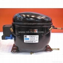Refrigerator Compressor ( R134a compressor)