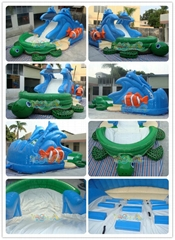 Sea Turtle Inflatable Water Slide