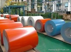 High Quality Hot Dipped Galvanized Steel Sheet Steel Coil