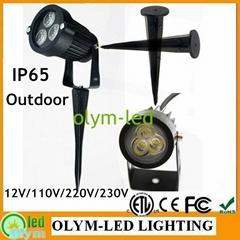 3W LED Garden Lawn Light with Spike Outdoor 12V 110V/220V White/RGB IP65