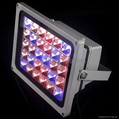 High Power LED Flood Grow Light for Hydroponic Plant Lamp
