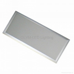 24W LED Panel Lighting Ceil Panel Lamp 300*600mm