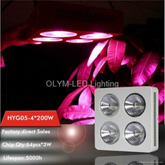 LED Plant Light 200W 400W 800W Grow Light Lamp Full Spectrum
