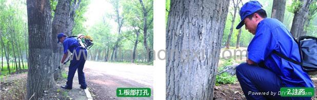厂家直销林业高大树木病虫害治理树干打孔注药机BG305D 12