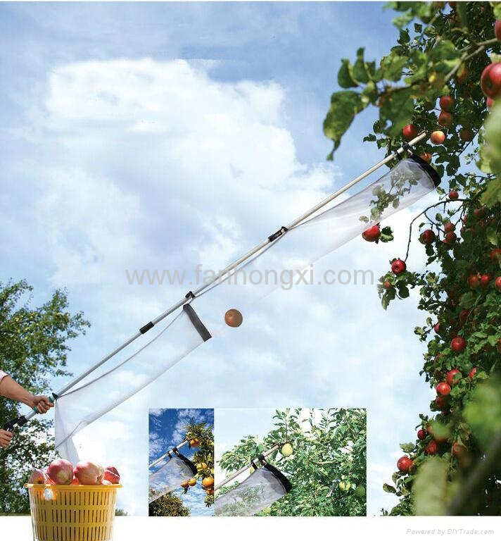 picking tools/picking fruit  4