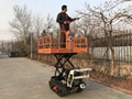 Crawler type dumper with lift container,