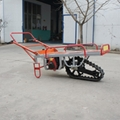 Motor barrow with single pedrail SH-80