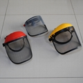 Face Protector,Helmet