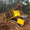 Multi-function wood truck transporter 2