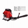 Large wind Two-stroke backpack engine