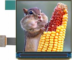 PA320320A 320xRGBx320 AMOLED Graphic Display Module