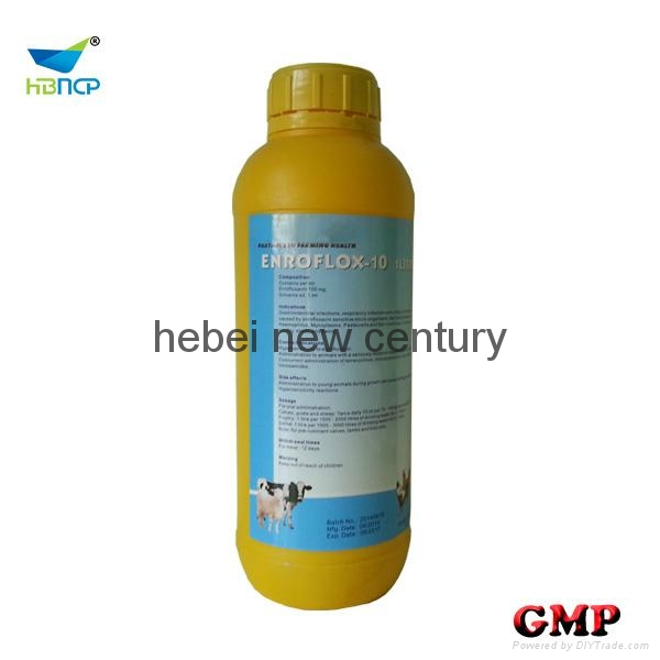 Enrofloxacin oral solution medicine for animals 1