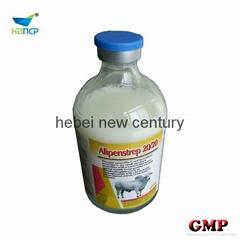 penicillin g and dihydrostreptomycin
