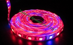 UV led strip light by mufue
