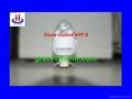 Silane Coated Ammonium Polyphosphate II
