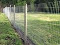 Grassland Garden Cattle Fence 5