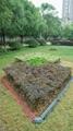 Top fence edging garden border lawn china